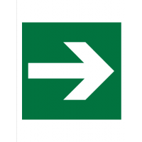 Знак эвакуационный E02-01 Направляющая стрелка (Пленка 200 х 200)