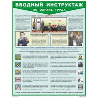 Плакат Вводный инструктаж по охране труда (1 лист, формат А2+, 465х610 мм, ламинация)